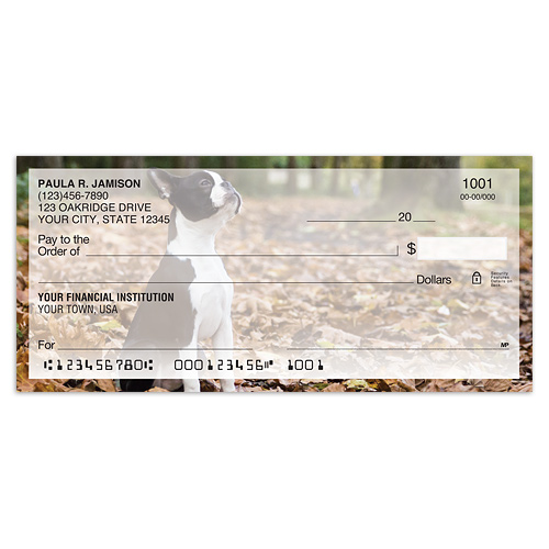 Boston Terrier Photo Checks