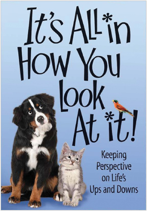 It's All In How You Look At It Book